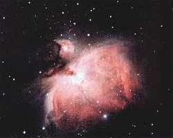 [Orion Nebula through Meade and Celestron telescopes]